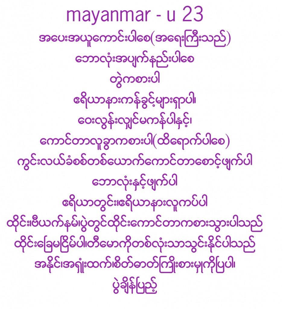 myanmarsurewinu23